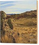Rocky Painted Hills Wood Print