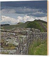 Roman Wall Country Wood Print