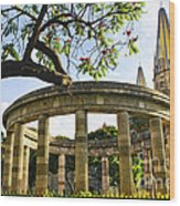 Rotunda Of Illustrious Jalisciences And Guadalajara Cathedral Wood Print