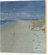 Ruakaka Beach Wood Print by Debra Piro