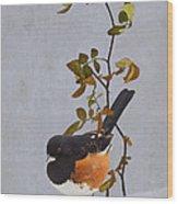 Rufous-sided Towhee Wood Print