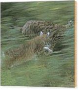 Running Lynx Wood Print