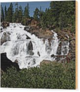 Running Water Glen Alpine Falls Wood Print