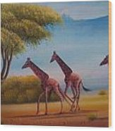 Running Zebras Wood Print