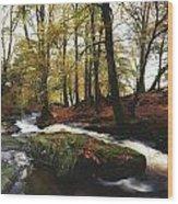 Sally Gap, County Wicklow, Ireland Wood Print