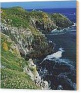 Saltee Islands, Co Wexford, Ireland Wood Print