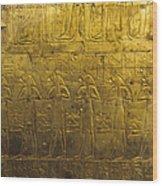 Sarcophagus Exterior Wood Print