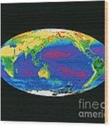 Satellite Image Of The Earths Biosphere Wood Print
