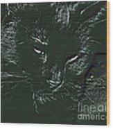 Satin Wood Print