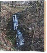 Scaleber Force Wood Print