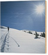 Scott Cooper Backcountry Skiing Wood Print