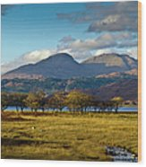 Scottish Landscape View Wood Print