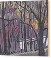 Sheds Wood Print by Donald Maier