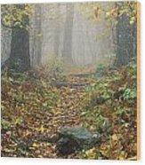 Shenandoah National Park In Virginia Wood Print