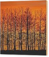 Silhouette Of Trees Against Sunset Wood Print
