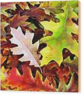 Simple Background From Autumn Leaves Wood Print