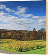 Six Miles Creek Vineyard Wood Print