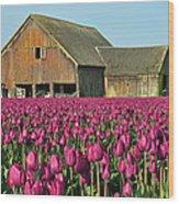 Skagit Valley Washington Wood Print