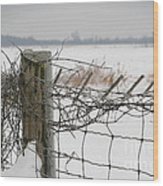 Snow Fence  Wood Print by Sandra Cunningham