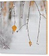 Snowing In Autumn Wood Print