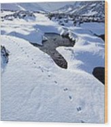 Snowy Landscape, Scotland Wood Print