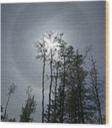 Solar Halo Wood Print