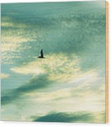 Solo Flight Wood Print