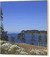 Sooke Harbour And The Strait Of Juan De Fuca Wood Print