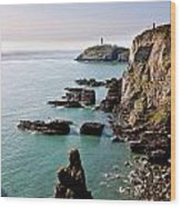 South Stack Wood Print by Gary Finnigan