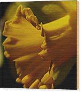 Splash Of Yellow Wood Print