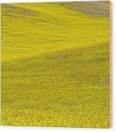 Spring In Spain Wood Print