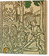 St. Catherine, Italian Philosopher Wood Print
