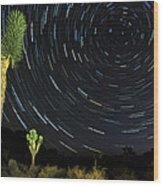 Star Trails In Joshua Tree Wood Print by Dung Ma