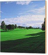 Stirling Golf Club Fairway Wood Print