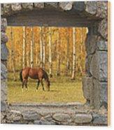 Stone Window View And Beautiful Horse Wood Print