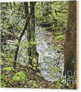 Stream Monongahela National Forest Wood Print