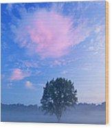Summer Meadow At Dawn Wood Print