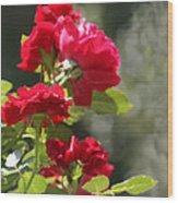 Summer's Bloom Wood Print