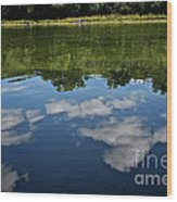 Summer's Reflections Wood Print