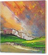 Sunset 25 Wood Print
