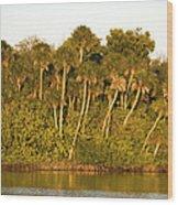 Sunset Palm Trees Wood Print