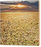 Sunset Wheat Wood Print