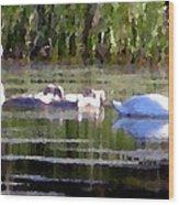 Swans In Hue Pallet Wood Print