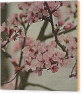 Sweet Spring Wood Print by Terrie Taylor