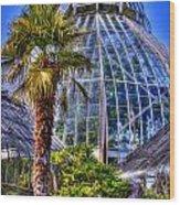 Tacoma Botanical Conservatory Wood Print