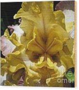 Tall Bearded Iris Named Butterfingers Wood Print