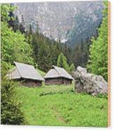 Tatra Mountains In Poland Wood Print