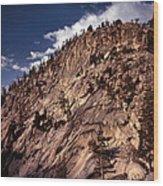 Ten Lakes Basin - Yosemite N.p. Wood Print