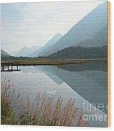 Tern Lake Wood Print
