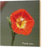 Thank You - Card Wood Print